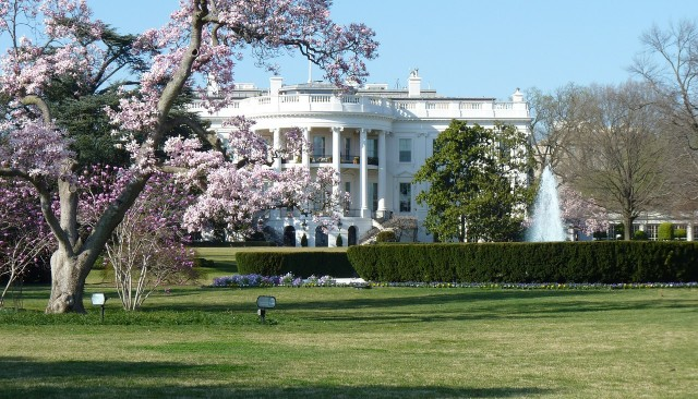 White House in spring