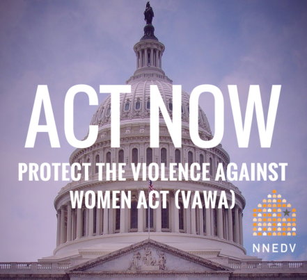 Act Now Protect the Violence Against Women Act VAWA